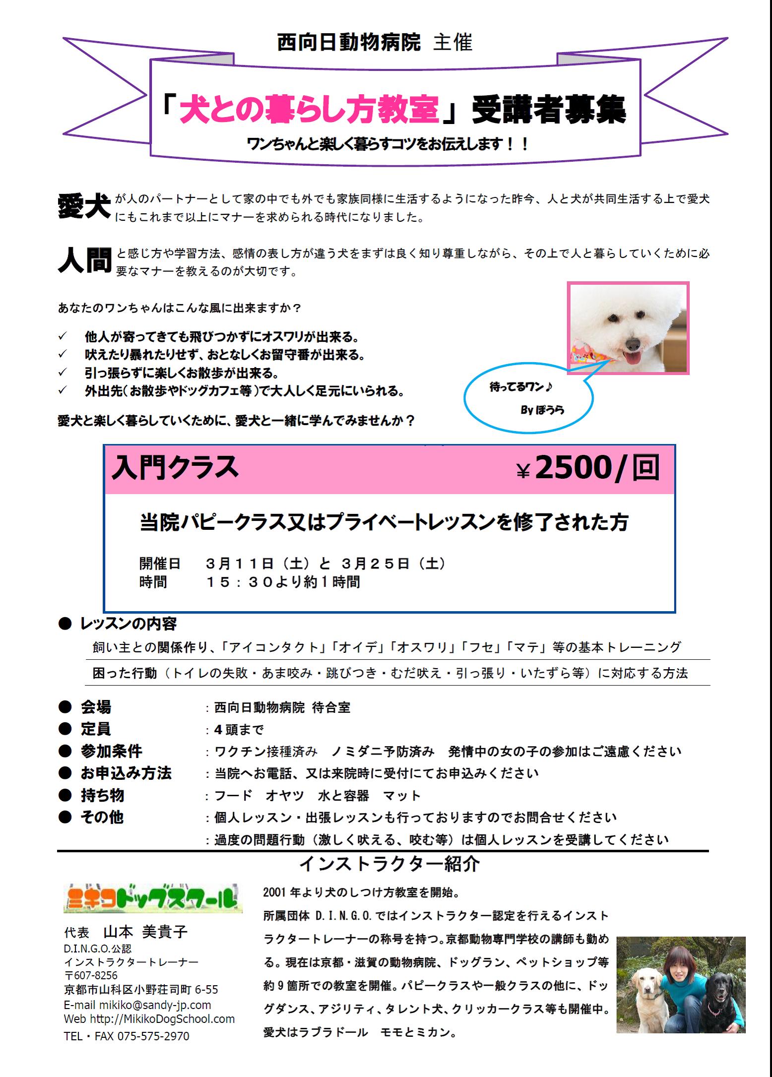 犬との暮らし方教室(3月開催分)参加者募集のお知らせ
