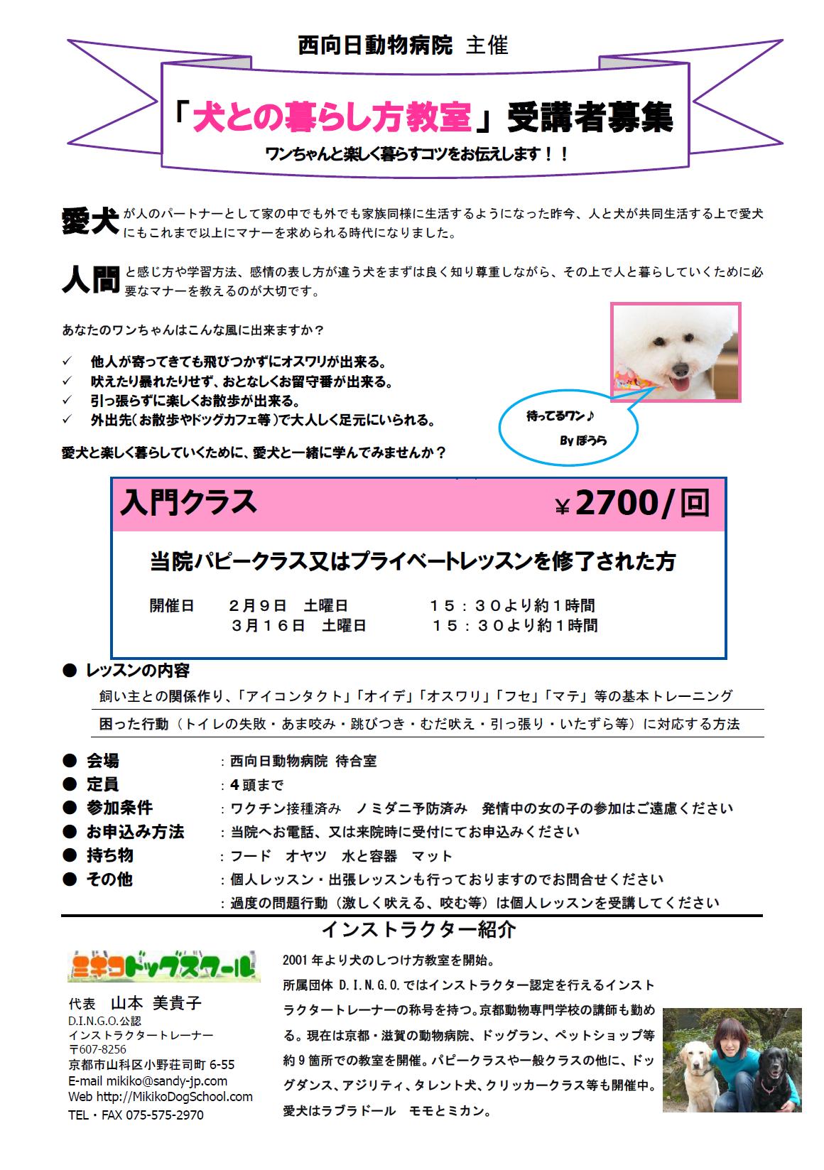 犬との暮らし方教室(2月・3月)参加者募集のお知らせ