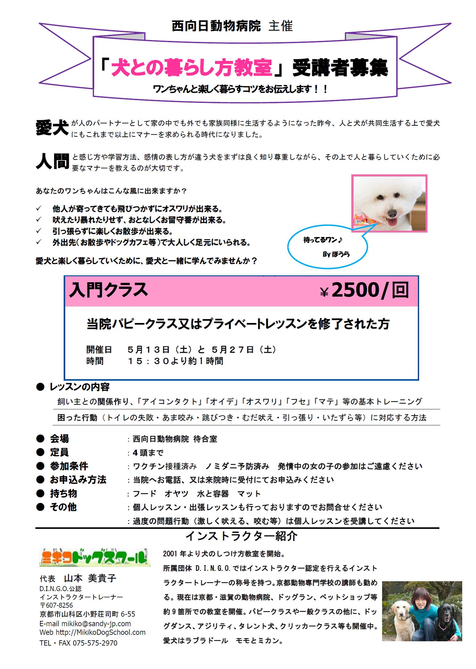 「犬との暮らし方教室」5月の受講生を募集しています!!